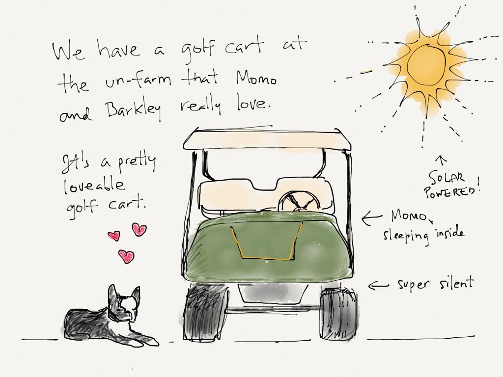 momo barkley golf cart 1