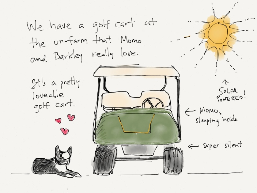 momo barkley golf cart 1