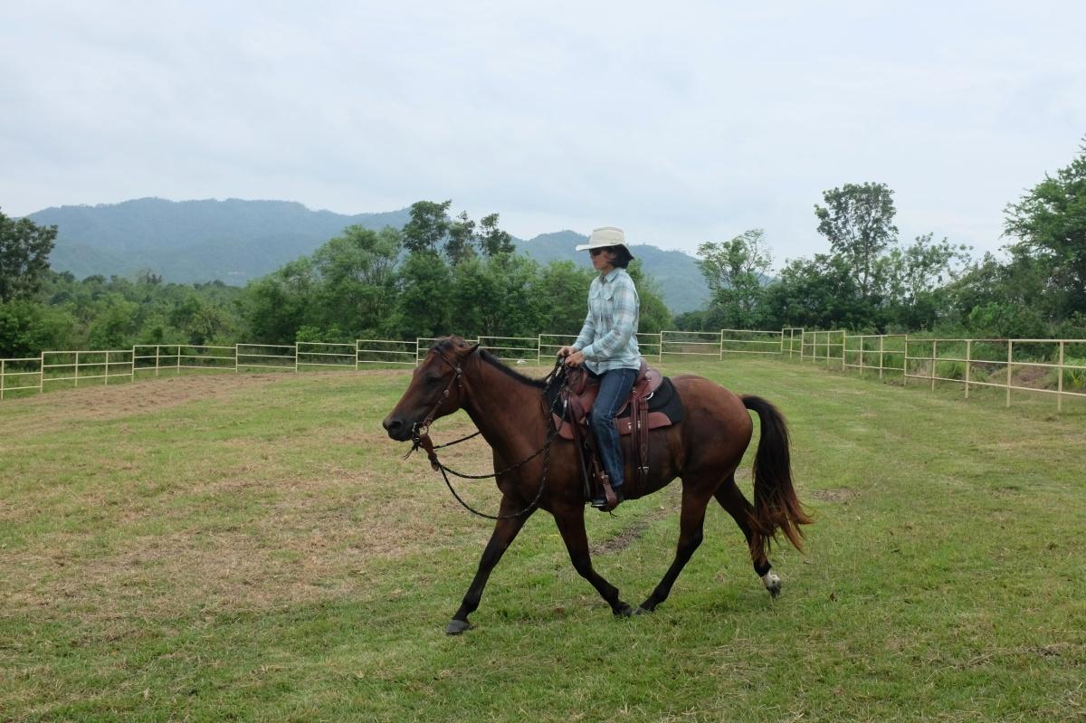Thanks for the RidingArena!
